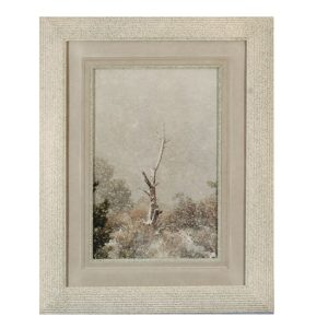 Made in Nevada Snowtree at La Madre Springs, Red Rock, NV – Framed Print