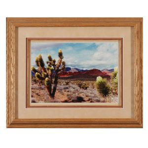 Made in Nevada Joshua Blooms at Red Rock, NV – Framed print