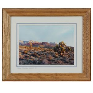 Made in Nevada Spring Morning at Red Rock, NV – Framed print