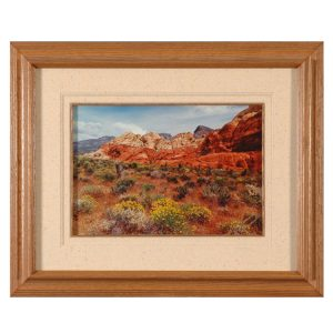 Made in Nevada Summer at Red Rock, NV – Framed Print