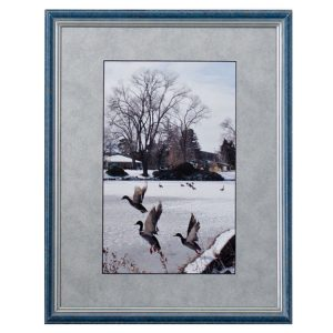 Made in Nevada Idlewild Park, Reno. NV – Framed print