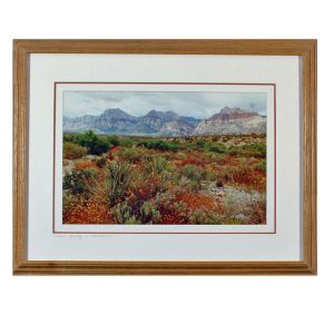 Made in Nevada Desert Tapestry, Red Rock, NV – Framed print
