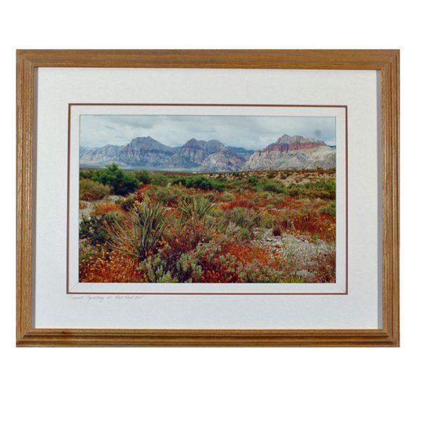 Made in Nevada Desert Tapestry, Red Rock, NV – Framed print