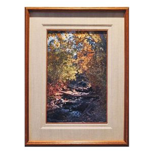 Made in Nevada Cascading Stream, Desert Creek, NV – Framed Print