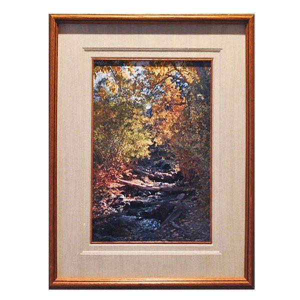 Made in Nevada Cascading Stream, Desert Creek, NV – Framed Print