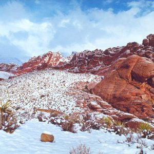 "Made in Nevada ""Winter Wonders at Red Rock, NV"" – Color Photographic Print"
