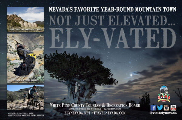 Made in Nevada Professional Graphic Design, Photo Editing, Video Editing