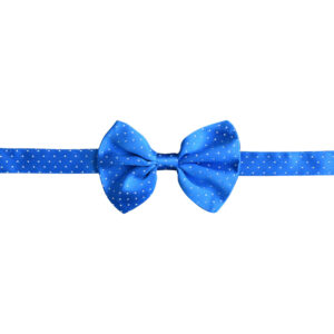 Made in Nevada Royal blue bowtie with tiny white polka dots
