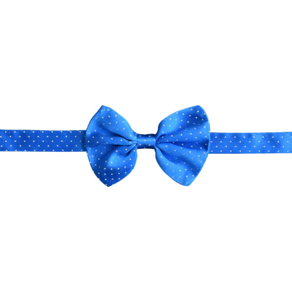 Royal blue bowtie with white polka dots