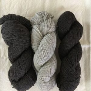 Made in Nevada Hayes Range Fingering Weight 2-ply Wool Yarn
