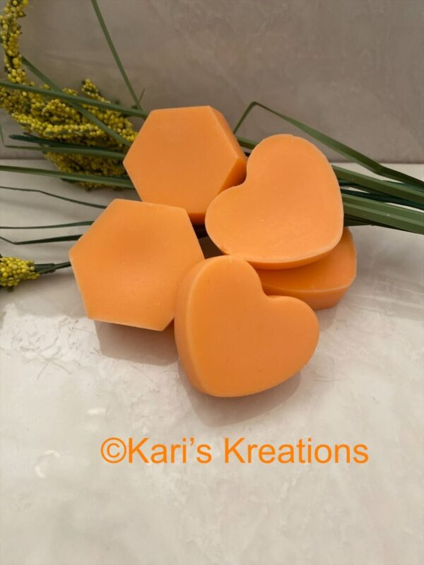 Made in Nevada Hand Poured Wax Melts