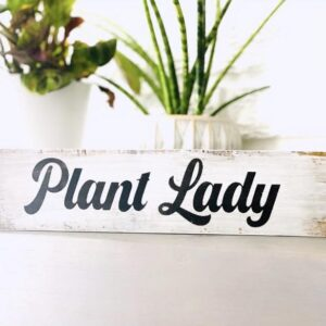 Made in Nevada Plant Lady Wood sign – shelfie
